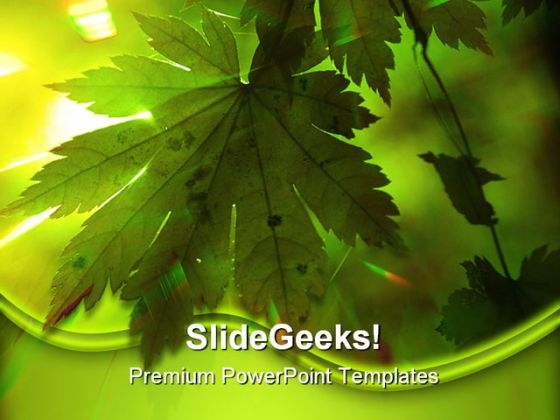 Green Leaves Nature PowerPoint Backgrounds And Templates 1210