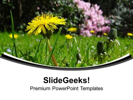 Green Medow With Daisy Flower PowerPoint Templates Ppt Backgrounds For Slides 0713