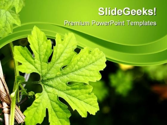 Green Plant Nature PowerPoint Themes And PowerPoint Slides 0611