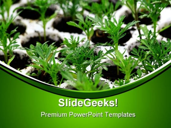 Green Plants Nature PowerPoint Themes And PowerPoint Slides 0411