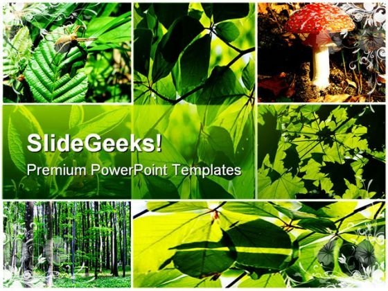 Green Summer Forest Collage Nature PowerPoint Themes And PowerPoint Slides 0611