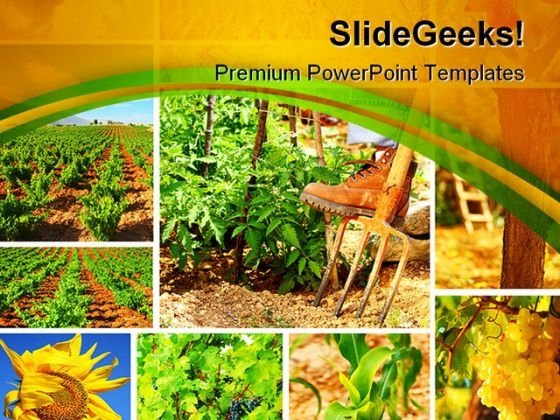 Harvest Concept Collage Agriculture PowerPoint Themes And PowerPoint Slides 0411