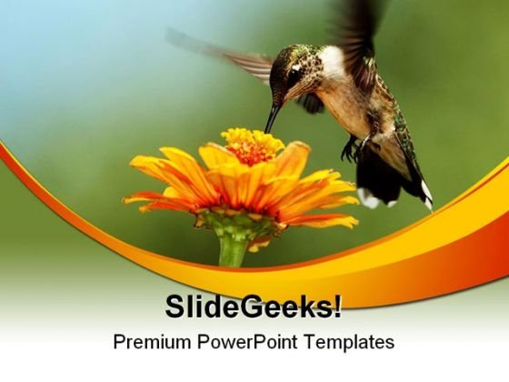 Humming Bird01 Animals PowerPoint Themes And PowerPoint Slides 0211