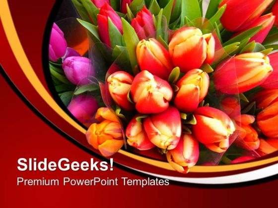 Image Of Colorful Tulips Flowers PowerPoint Templates Ppt Backgrounds For Slides 0213