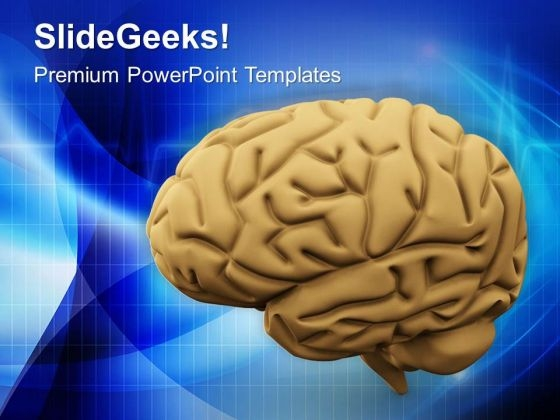 Image Of Human Brain Medical PowerPoint Templates Ppt Backgrounds For Slides 0713