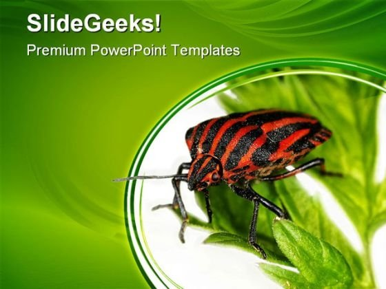 Insect Animals PowerPoint Themes And PowerPoint Slides 0511