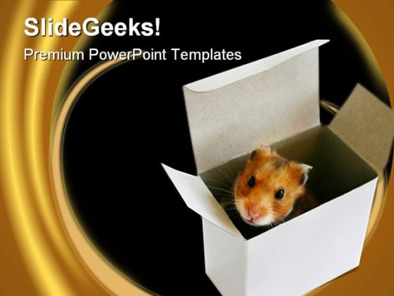 Inside The Box Metaphor PowerPoint Themes And PowerPoint Slides 0211