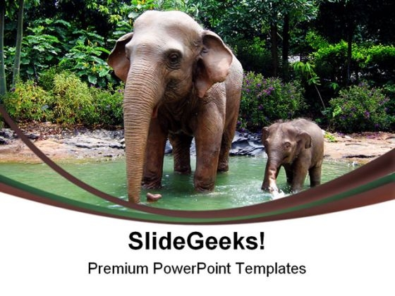 mother and baby elephant powerpoint templates slides and graphics