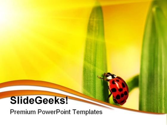 Lady Bug Struggling Nature PowerPoint Themes And PowerPoint Slides 0211
