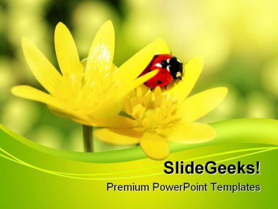 Ladybird Animals PowerPoint Themes And PowerPoint Slides 0511