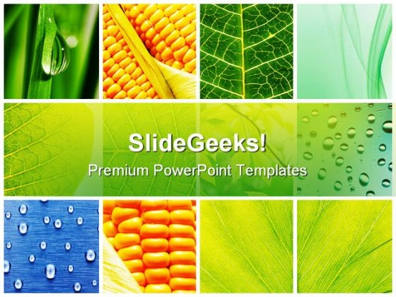 Leaves Collage Nature PowerPoint Themes And PowerPoint Slides 0811