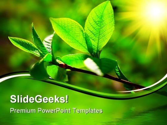 Leaves Nature Beauty PowerPoint Themes And PowerPoint Slides 0511
