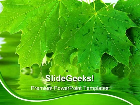 Leaves Nature PowerPoint Templates And PowerPoint Backgrounds 0311