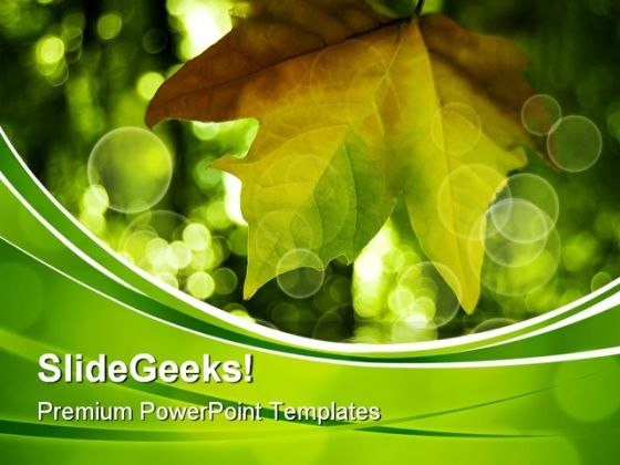 Leaves On Grass Nature PowerPoint Themes And PowerPoint Slides 0511