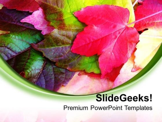 Leaves With White Background Theme PowerPoint Templates Ppt Backgrounds For Slides 0713