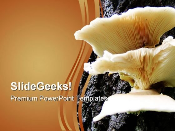 Mushrooms On Tree Food PowerPoint Templates And PowerPoint Backgrounds 0311