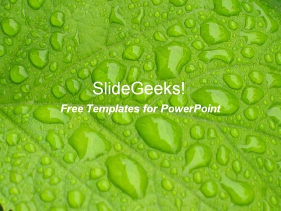 Leaf Droplets PowerPoint Template