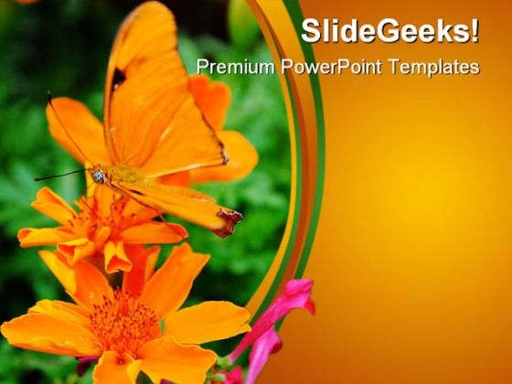 Orange Butterfly Nature PowerPoint Themes And PowerPoint Slides 0211