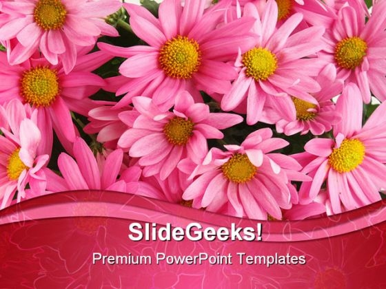 Pink Daisy Beauty PowerPoint Template 0910
