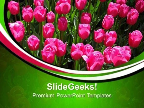 Pink Tulips In Garden Beauty PowerPoint Templates Ppt Backgrounds For Slides 0213
