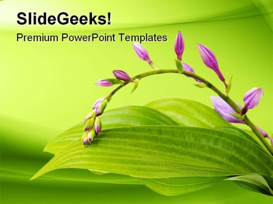 Purple Hosta Nature PowerPoint Template 1110