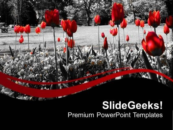 Red Flower With Black Background PowerPoint Templates Ppt Backgrounds For Slides 0713