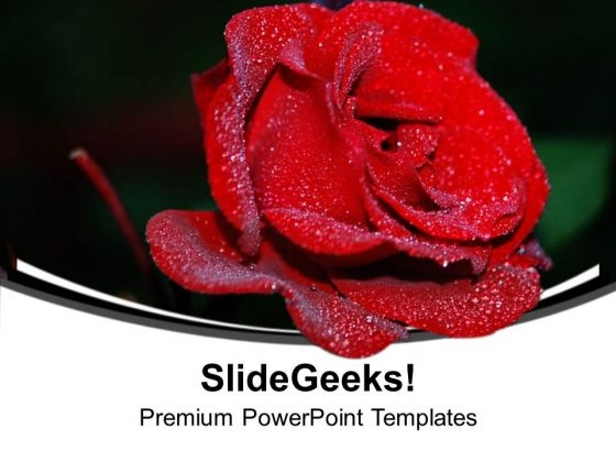 Red Rose Beauty Flower PowerPoint Templates Ppt Backgrounds For Slides 0313