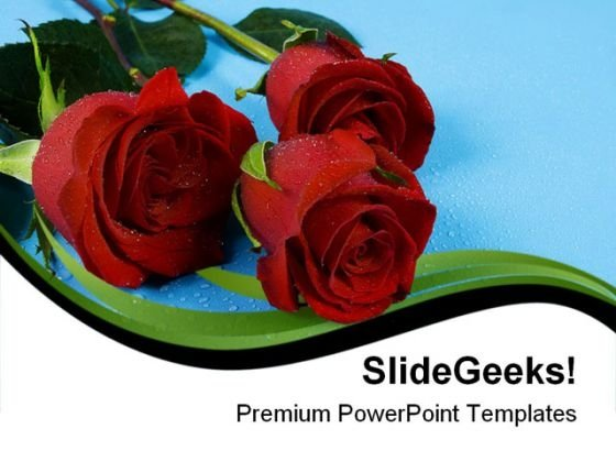 Red Roses01 Beauty PowerPoint Templates And PowerPoint Backgrounds 0611