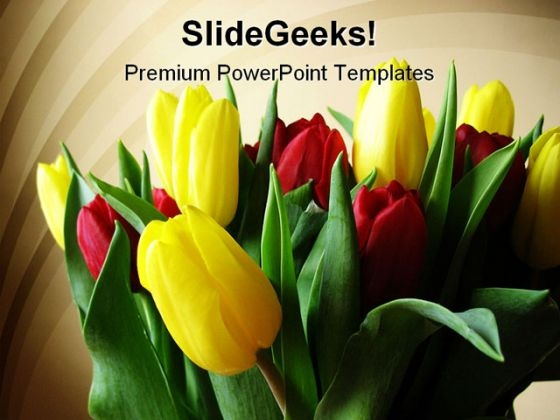 Red Yellow Tulips Beauty PowerPoint Templates And PowerPoint Backgrounds 0311