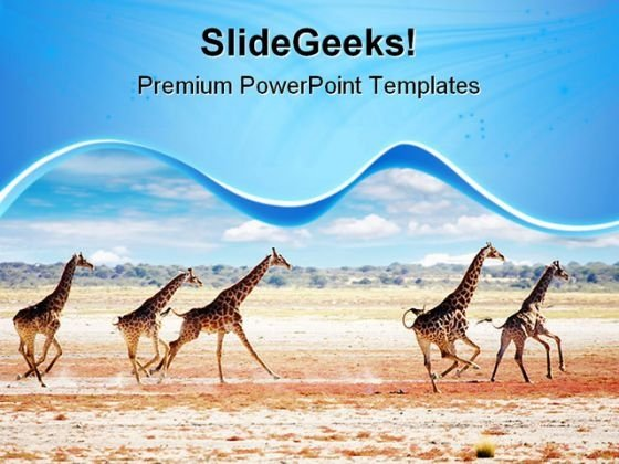 Running Giraffes Animals PowerPoint Templates And PowerPoint Backgrounds 0611