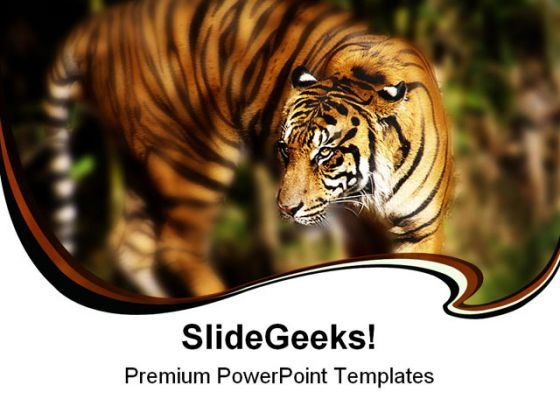 Siberian Tiger Animals PowerPoint Themes And PowerPoint Slides 0211