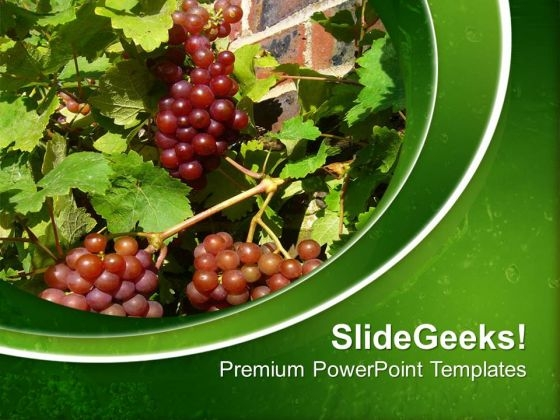 Small Berries With Green Background PowerPoint Templates Ppt Backgrounds For Slides 0613