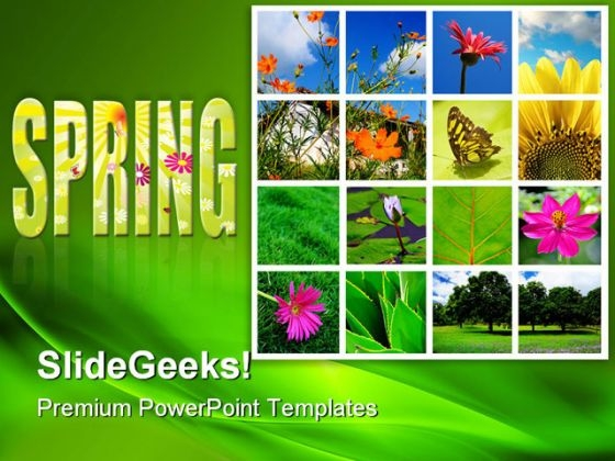 Spring And Nature Collage Beauty PowerPoint Templates And PowerPoint Backgrounds 0811