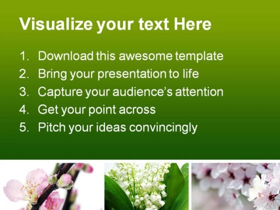 Spring Flowers Beauty Powerpoint Template   Powerpoint Themes