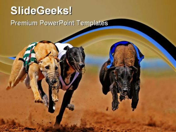 Sprinting Greyhounds Animals PowerPoint Templates And PowerPoint Backgrounds 0811