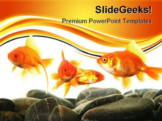 Stonefish In Aquarium Animals PowerPoint Themes And PowerPoint Slides 0411