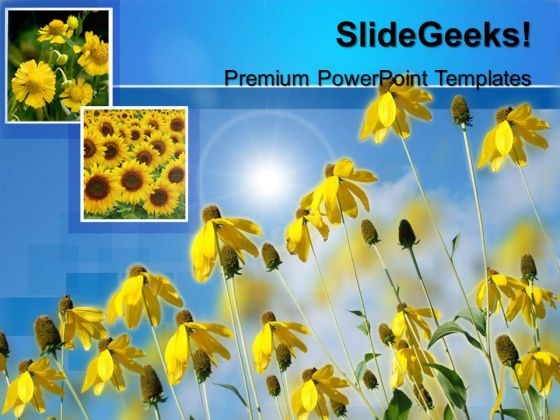 Sunflower Nature PowerPoint Templates And PowerPoint Themes 0512