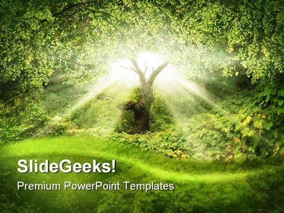 Sunlight in forest nature powerpoint template 0910 powerpoint themes nature powerpoint template 0910 sunlightinforestnaturepowerpointtemplate0910title sunlightinforestnaturepowerpointtemplate0910text toneelgroepblik Image collections