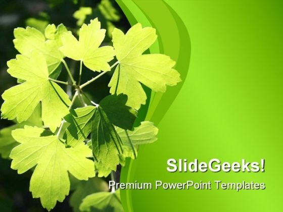 Sunlit Leaves Nature PowerPoint Themes And PowerPoint Slides 0511