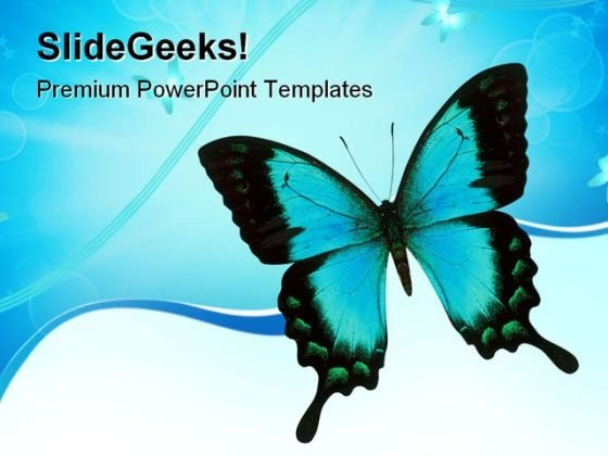 Swallowtail Butterfly Animals PowerPoint Themes And PowerPoint Slides 0811