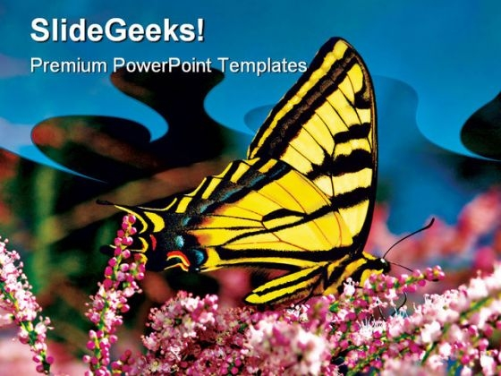 Swallowtail Butterfly Nature PowerPoint Themes And PowerPoint Slides 0511