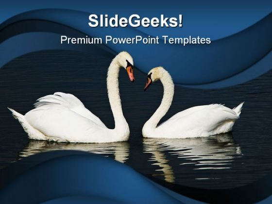 Swans Beach PowerPoint Templates And PowerPoint Backgrounds 0111