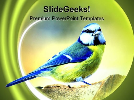 Tit Nature PowerPoint Templates And PowerPoint Backgrounds 0111