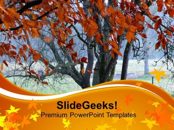 Tree Representing Autumn Season PowerPoint Templates Ppt Backgrounds For Slides 0713