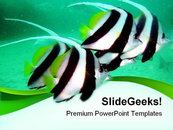 Tropical Fishes Animals PowerPoint Themes And PowerPoint Slides 0211