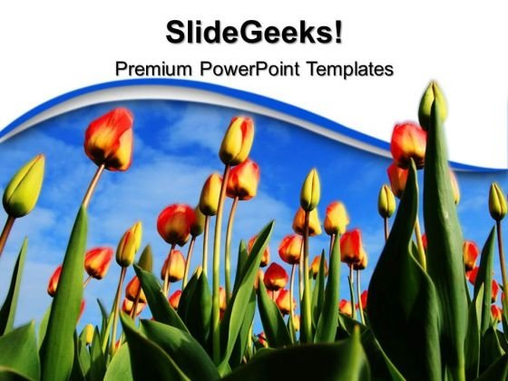 Tulips Background PowerPoint Templates And PowerPoint Themes 0512