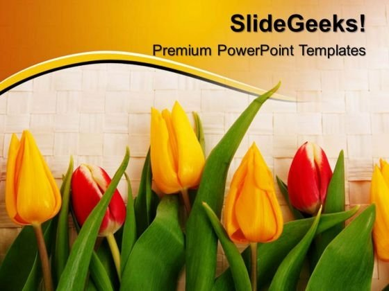 Tulips Beauty PowerPoint Templates And PowerPoint Themes 0512