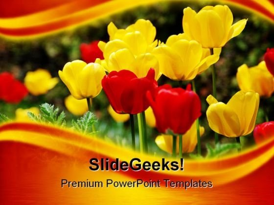 Tulips Flowers Nature PowerPoint Template 1110
