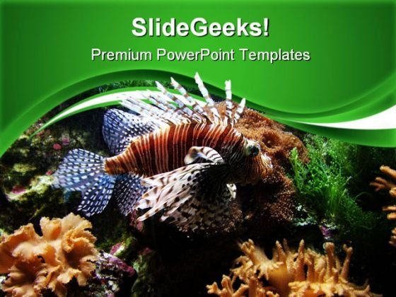 Turkey Pterois Volita Animals PowerPoint Themes And PowerPoint Slides 0411