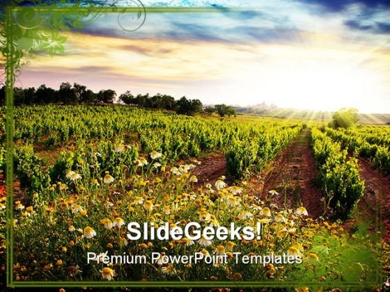 Vineyard Nature PowerPoint Templates And PowerPoint Backgrounds 0311